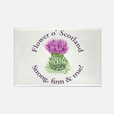 Scottish Thistle Rectangle Magnet