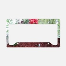 Funny Lilly License Plate Holder