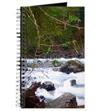 Nooksack River Trail Journal