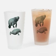 Cute Aunt to be twins Drinking Glass