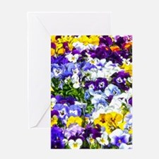 Pansies Greeting Cards