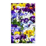 Pansy 3x5 Rugs