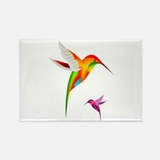 Colorful Hummingbirds Birds Magnets