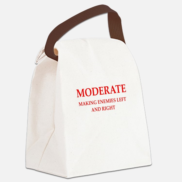 moderate Canvas Lunch Bag