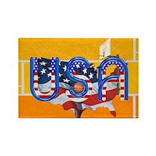 Hoops USA Rectangle Magnet