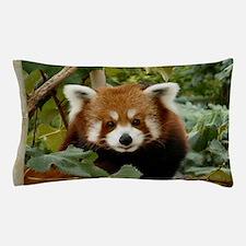 Cute Red fox Pillow Case