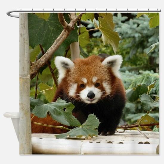 Cute Red panda Shower Curtain