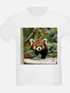 Unique Des moines T-Shirt