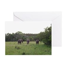 elephant 4 Greeting Card