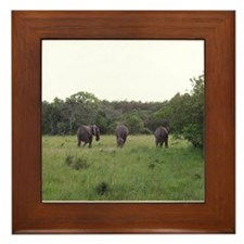 elephant 4 Framed Tile