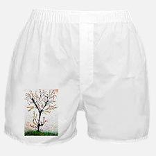 Spring tree Boxer Shorts
