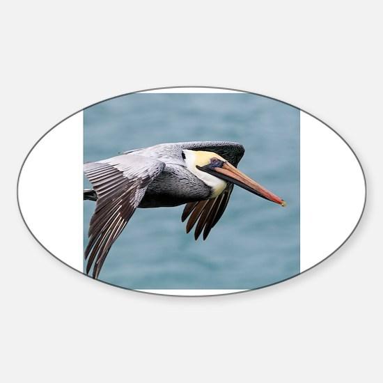 Unique Pelican fly Sticker (Oval)