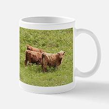 Highland cattle, Scotland Mugs