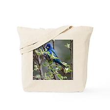 Cute Animal lovers Tote Bag