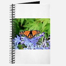 Monarch butterfly in garden Journal