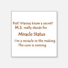 Miracle Status.JPG Sticker