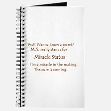 Miracle Status.JPG Journal