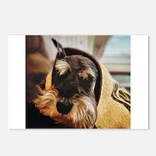 schnauzer peekaboo Postcards (Package of 8)