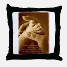 jeremiah 29 - plans for you.jpg Throw Pillow