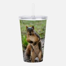 Cool Squirrels Acrylic Double-wall Tumbler