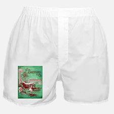 Vintage poster - Kansas Seed House Boxer Shorts