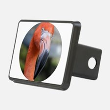 American Flamingo Hitch Cover