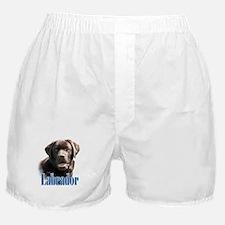 Lab(choco)Name Boxer Shorts