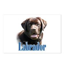 Lab(choco)Name Postcards (Package of 8)