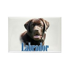 Lab(choco)Name Rectangle Magnet (100 pack)