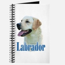 Lab(yellow)Name Journal