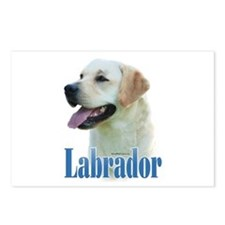 Lab(yellow)Name Postcards (Package of 8)