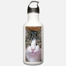 I'm Thinking Water Bottle