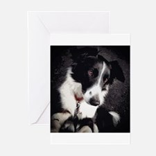 Border Collie Beg Greeting Cards