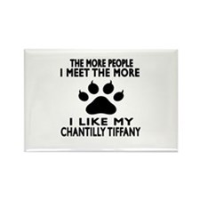 I Like My Chantilly Tiffany Cat Rectangle Magnet