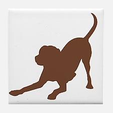 Lab 1C Brown Tile Coaster