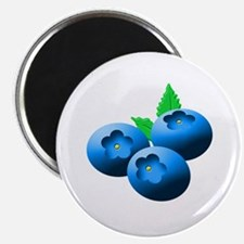 Blueberries Magnets