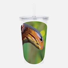 Atlas Moth and Snake H Acrylic Double-wall Tumbler