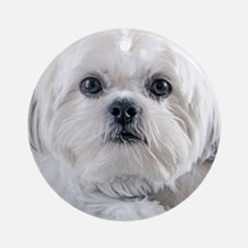 Cute Shih tzu Round Ornament