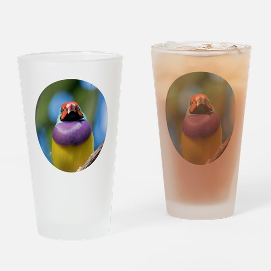 Funny Gouldian finch Drinking Glass