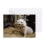 SNICKY'S 13TH BIRTHDAY GREETING CARDS (PK OF 10)