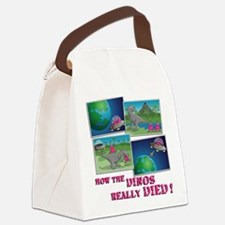 how the dinos really died Canvas Lunch Bag