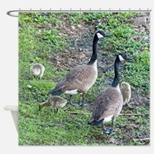 Family of Geese Shower Curtain