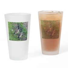 Family of Geese Drinking Glass