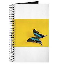 Beautiful butterfly photo Journal