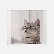 american shorthair grey tabby Throw Blanket
