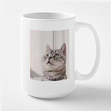 american shorthair grey tabby Mugs