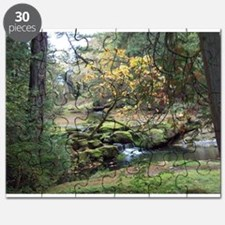 Fall in Bowen Park Puzzle