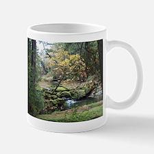 Fall in Bowen Park Mugs