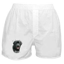 Lab Mom2 Boxer Shorts
