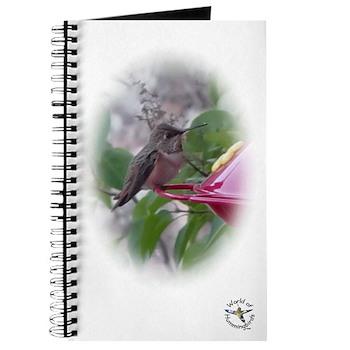 World of Hummingbirds .com Journal